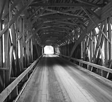 Inside the Blair Bridge by AntonLee