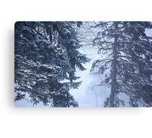 Winter Ghosts Canvas Print