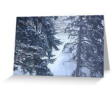 Winter Ghosts Greeting Card