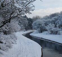 Winter wonderland 5 by DutchLumix