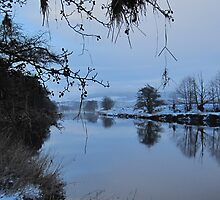 Banks of the River Deveron, Rothiemay, Aberdeenshire, Scotland Christmas 2009 by DeborahDinah