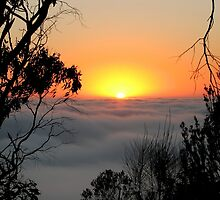Sunrise from Mount Barker Summit by LeeoPhotography