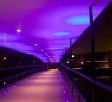 York Uni Bridge by ThePingedHobbit