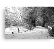 A carpet of snow Canvas Print