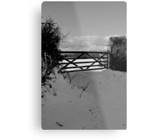 Winter scene 1 Metal Print
