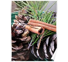 Pine Needles and Cones Poster
