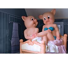 Playful pigs Photographic Print
