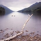 Loch Shiel by PigleT