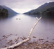 Loch Shiel by Tim Haynes
