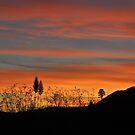 New Zealand sunset by Heather Thorsen