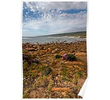 Rocky bay with wild flowers Poster