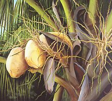 Yellow Coconuts from the Tropics by Dominica Alcantara