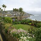 Fishermen's cottage gardens, Mousehole Cornwall UK by BronReid