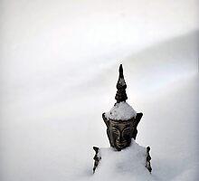 Winter Zen by Erik Holladay