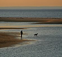 Sunset Dog Walk by Gilda Axelrod