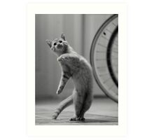 Dancing Cat Art Print