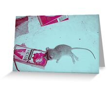 Dead Mouse Greeting Card