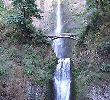 Maltnomah Falls---Columbia River Gorge-- Oregon by Lawson Jacobs