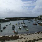 Fishing boats in marina, Mousehole, Cornwall UK by BronReid