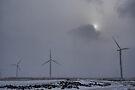 Wind Farm - Wolfe Island, Ontario, Canada by Allen Lucas