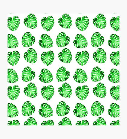Modern green abstract leaves pattern Photographic Print
