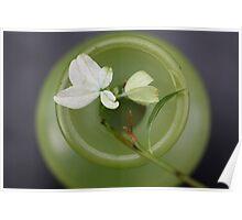 Green Circles Poster