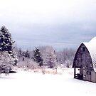 Frosty Morning by AuntieJ