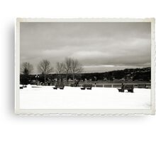A Winters Day - DeWolf Park Canvas Print