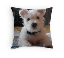 Brody Day 2 Throw Pillow