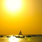 Sailing into a Honey Sky by MarianBendeth