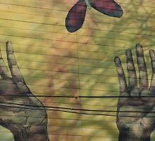 Hands by Lynn  Gibbons