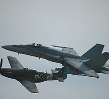 Mustang & Hornet @ Williamtown Airshow 2010 by muz2142