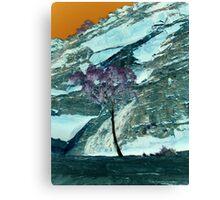 Palm Valley Canvas Print