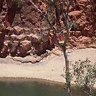 Resources and Camel Caravan by rattyandpossum