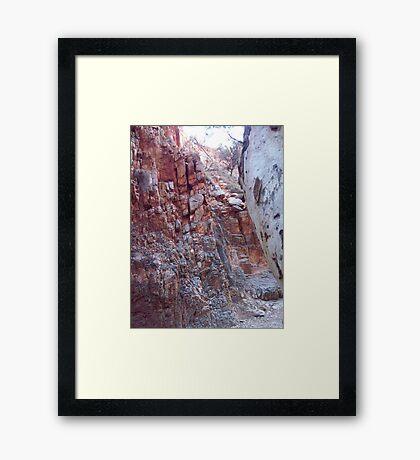 West Macs Framed Print