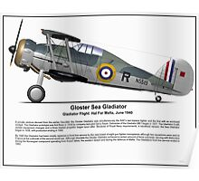 Gloster Sea Gladiator Poster