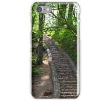 Rays of sun in the spring forest iPhone Case/Skin