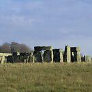 Moods of Stonehenge 1 - Sunshine by Sharon Perrett