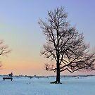 Winter Dream by ienemien