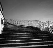 the king's steps by Dorit Fuhg