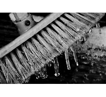 brittle bristles Photographic Print