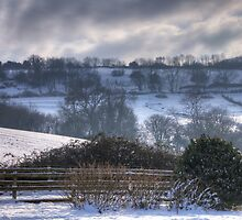 Snow on Tog Hill, from Woodlands (2) by Mick Yates