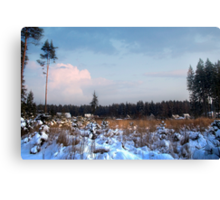 Snowy village in the forest  Canvas Print