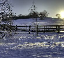 Snow on Tog Hill, from Woodlands by Mick Yates