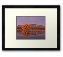Golden Hour at Bosque del Apache National Wildlife Refuge Framed Print
