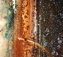 ...water lines... by Lynne Prestebak