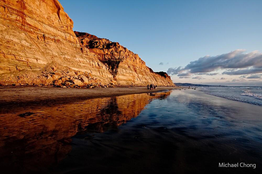 Torrey Pines Cliffs by Michael Chong