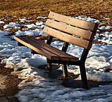 Too Cold for Comfort by Barb Miller