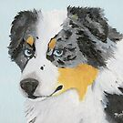 Sugar ~ Australian Shepherd Portrait ~ Oil Painting by Barbara Applegate