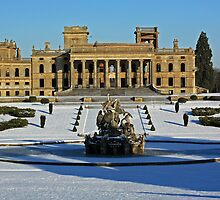 Witley Winter by Spencer Trickett